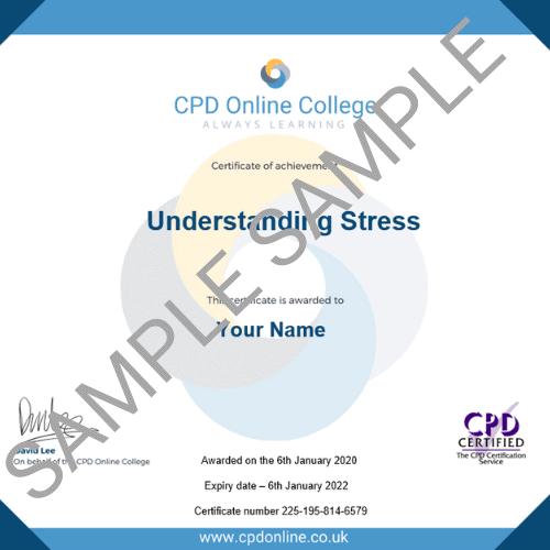 Understanding Stress PDF Certificate