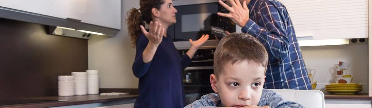 family issues schizophrenia