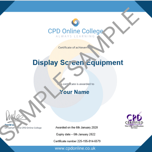 Display Screen Equipment PDF Certificate