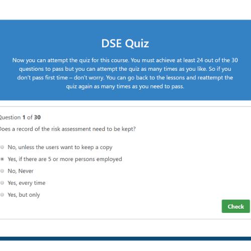 Display Screen Equipment Quiz Question