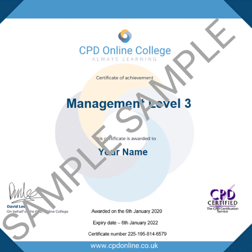 Management Level 3 PDF certificate