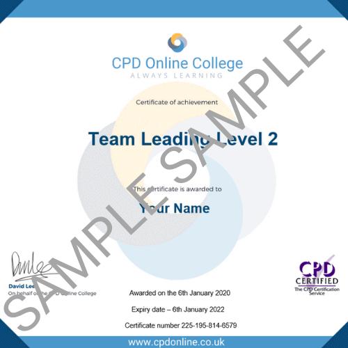 Team leading certificate on pdf