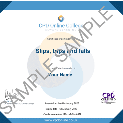 Slips trips and falls pdf certificate
