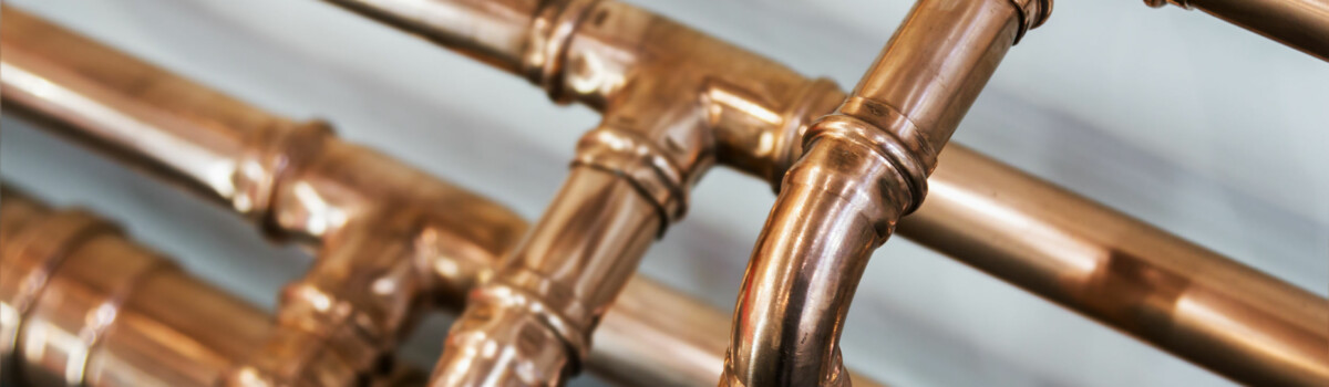 Copper pipes in rented home that have the possibility to have legionella in them