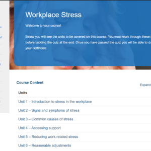 Workplace Stress Overview