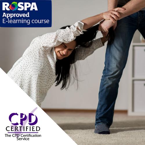 Domestic Violence Course