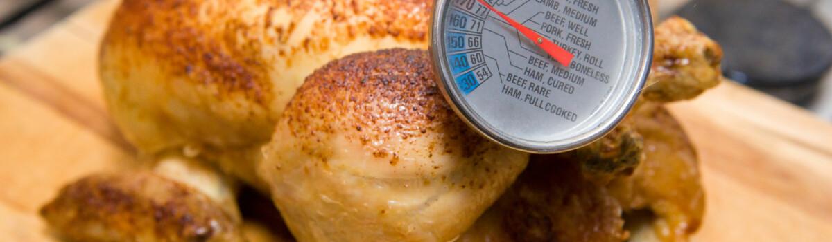 Checking temperature of chicken