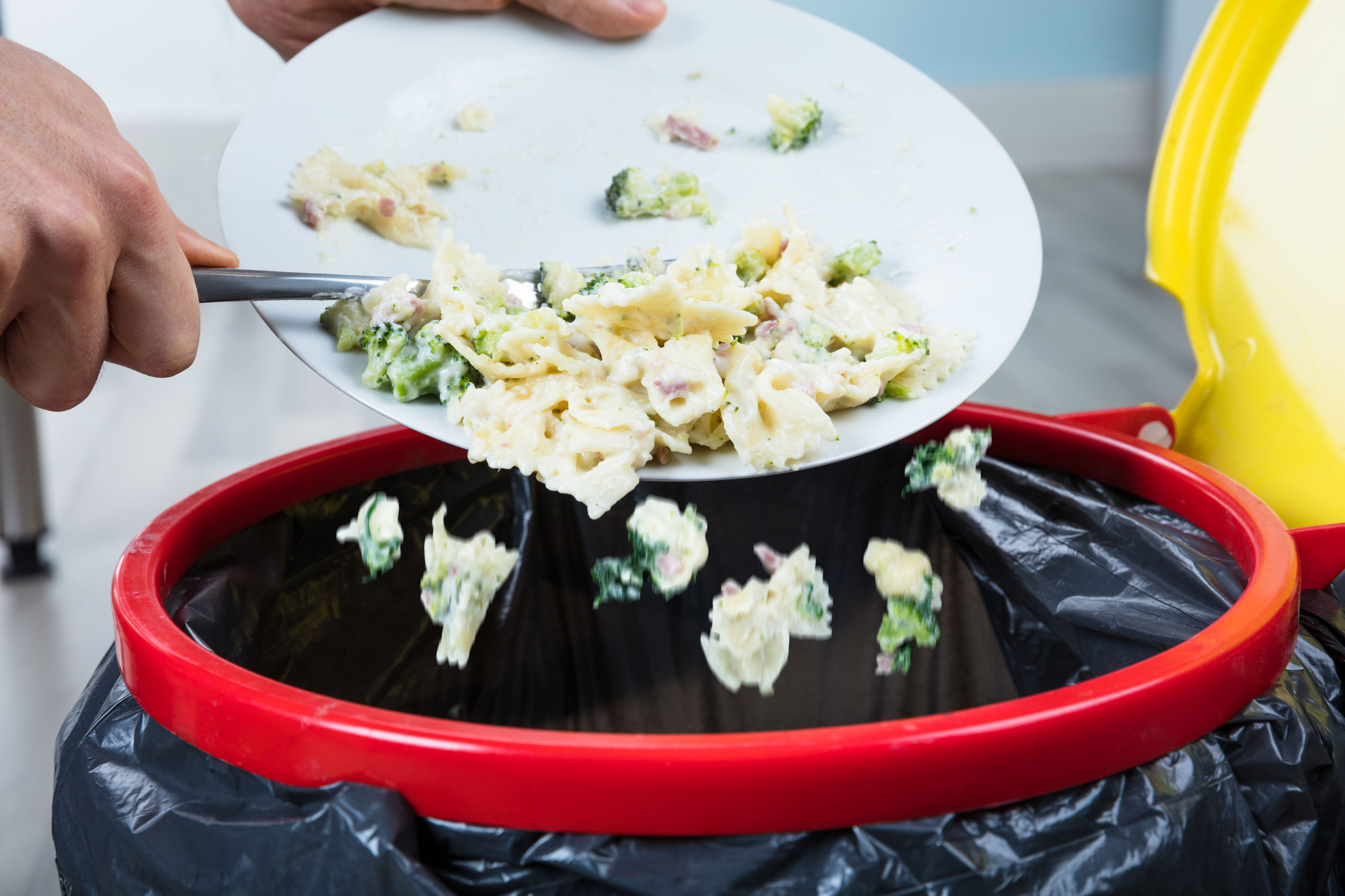 How To Reduce And Manage Food Waste In Your Restaurant