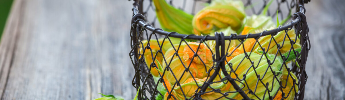 Courgette flowers are edible flowers for cakes