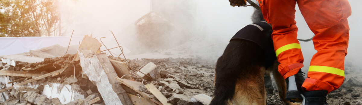 Natural disasters can cause dissociative identity disorder